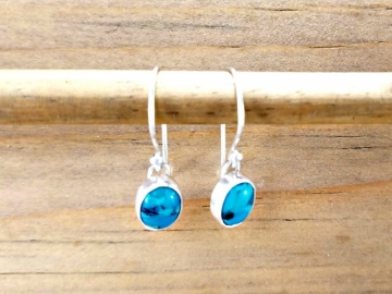Small Turquoise Dangles