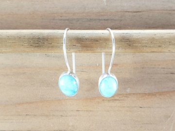 Amazonite Latch Back Earrings